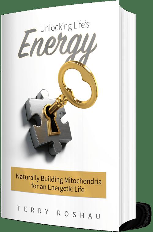Unlocking Life's Energy Book